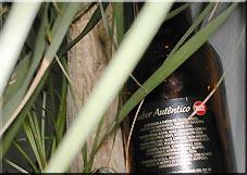 Biertest: Super Bock Portugal